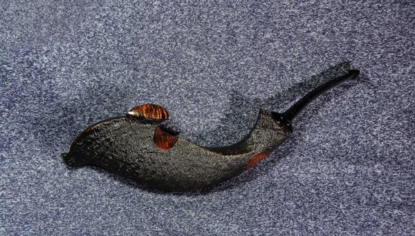 Alexander Sokolik Hammerhead Shark
